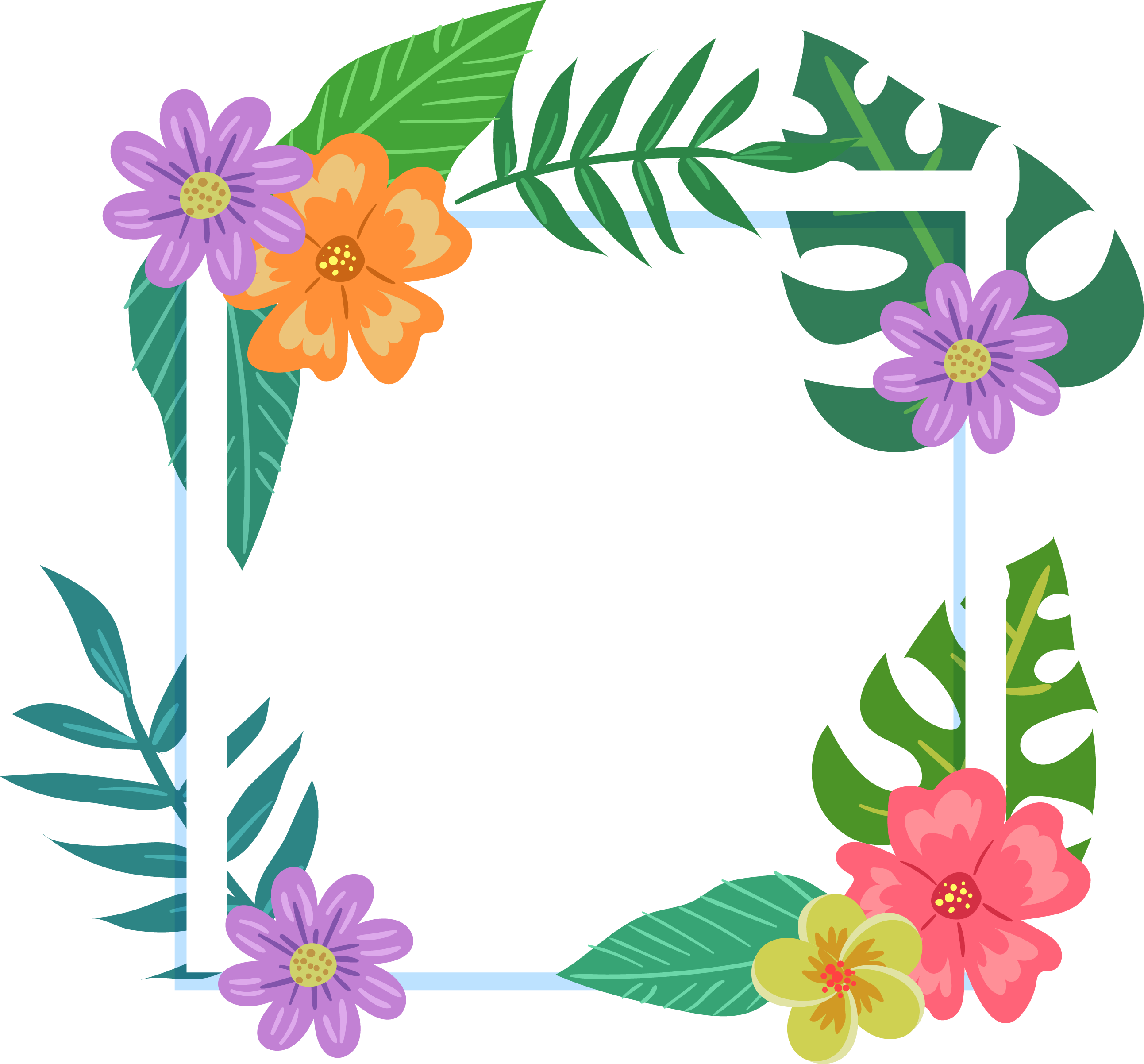 Picture Flower Colorful Tropics Frame Film PNG Image