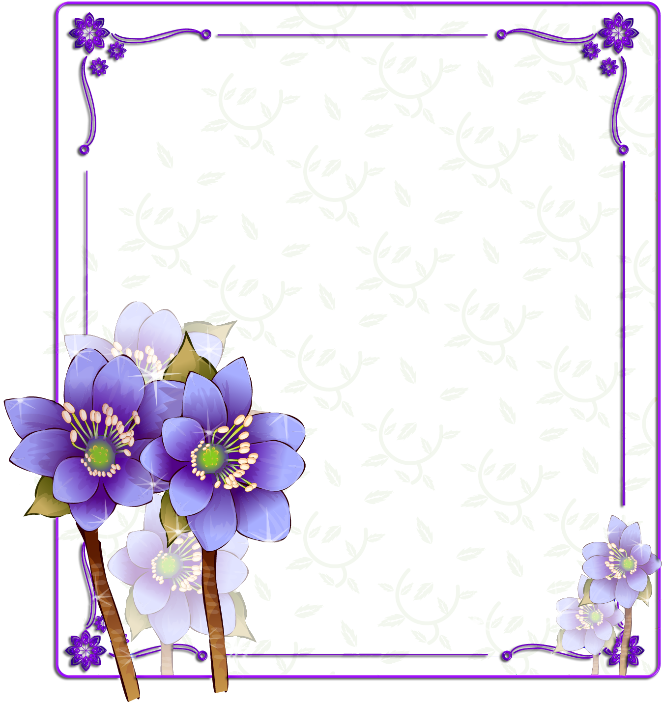 Purple Color Photography Flower Frame Free Download PNG HD PNG Image