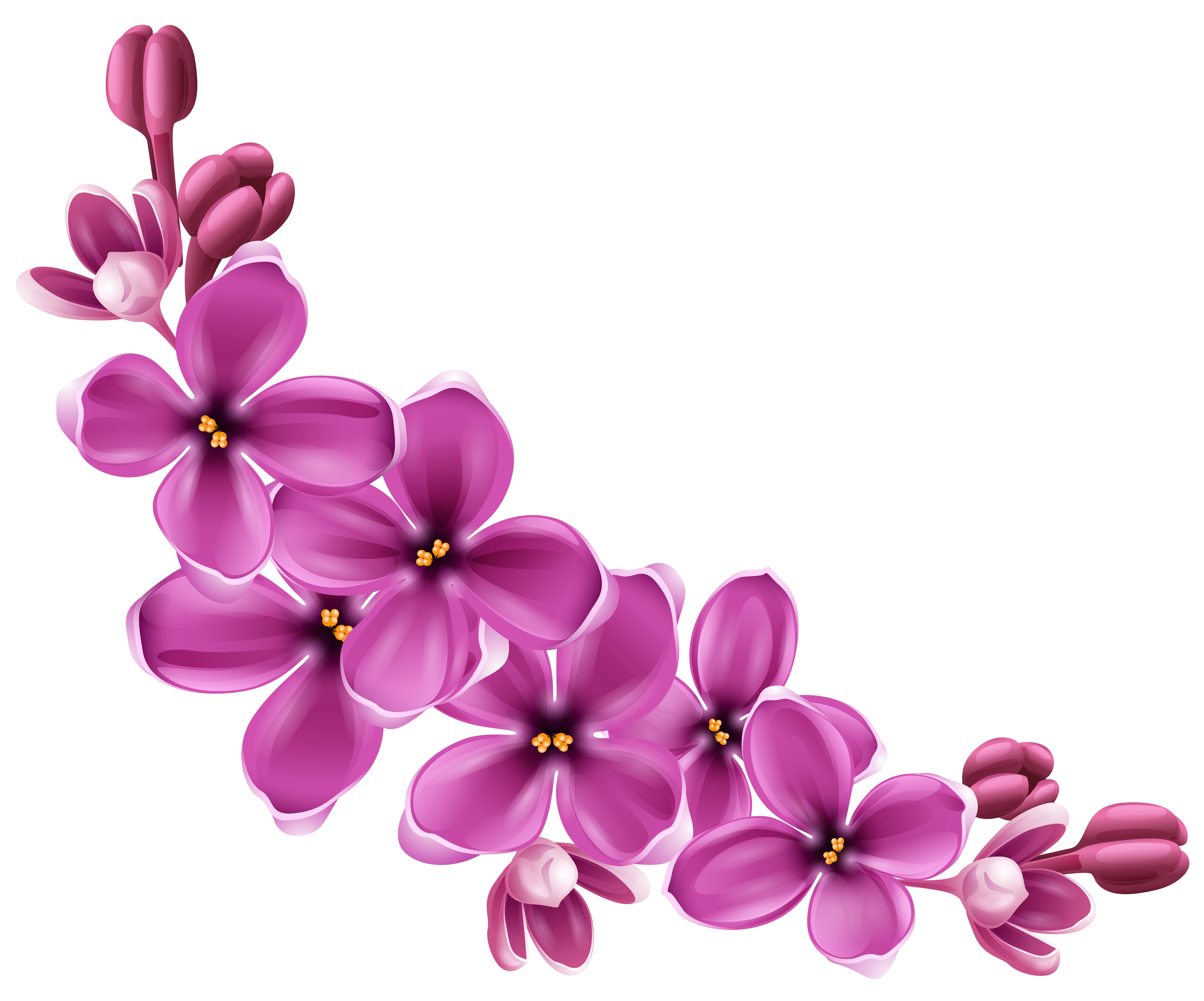 download flowers png 9 hq png image freepngimg free elephant clipart images free elephant clipart images