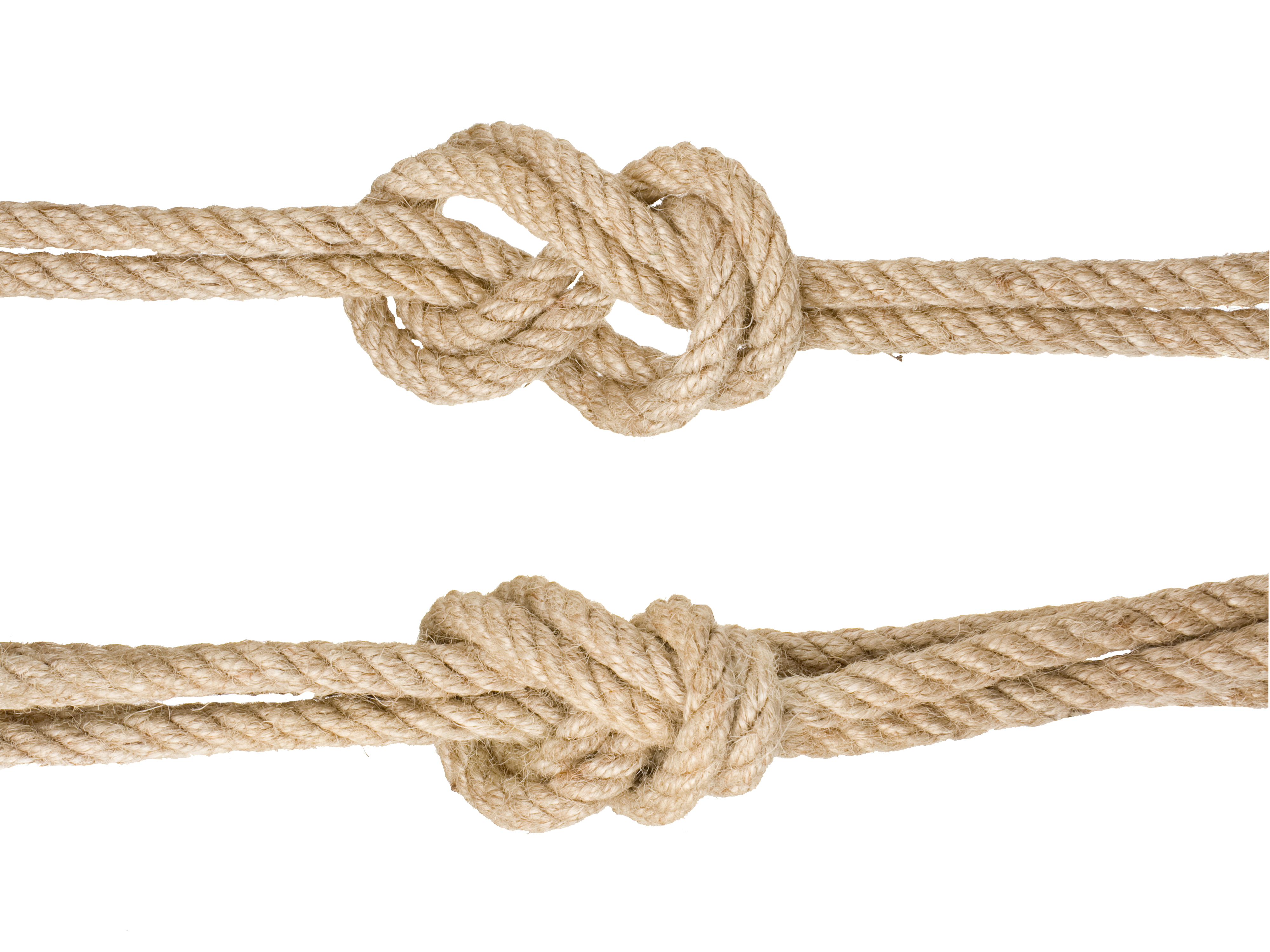 Google Knotted Rope Knot Images Hemp PNG Image