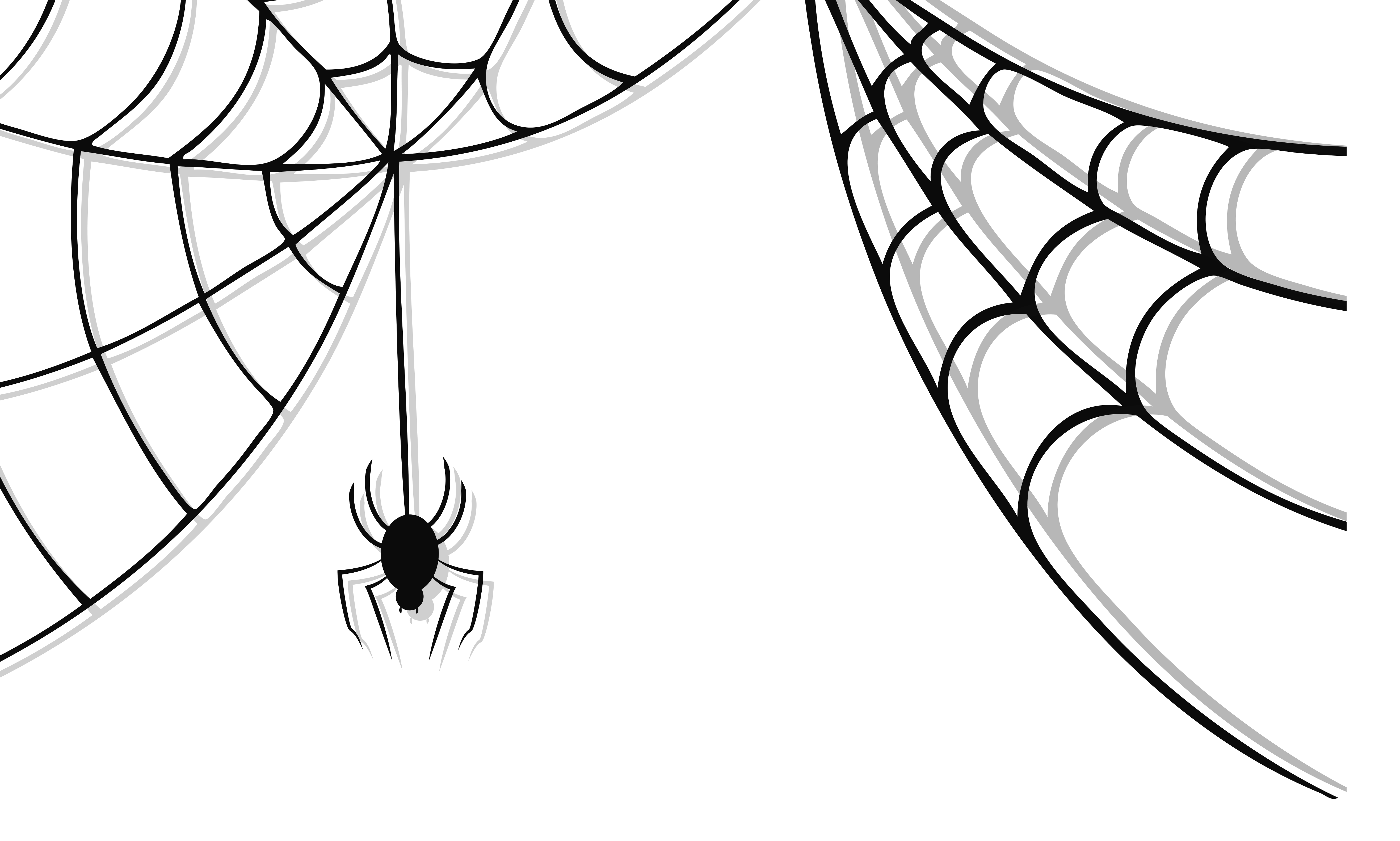 Halloween Spider Picture PNG Image