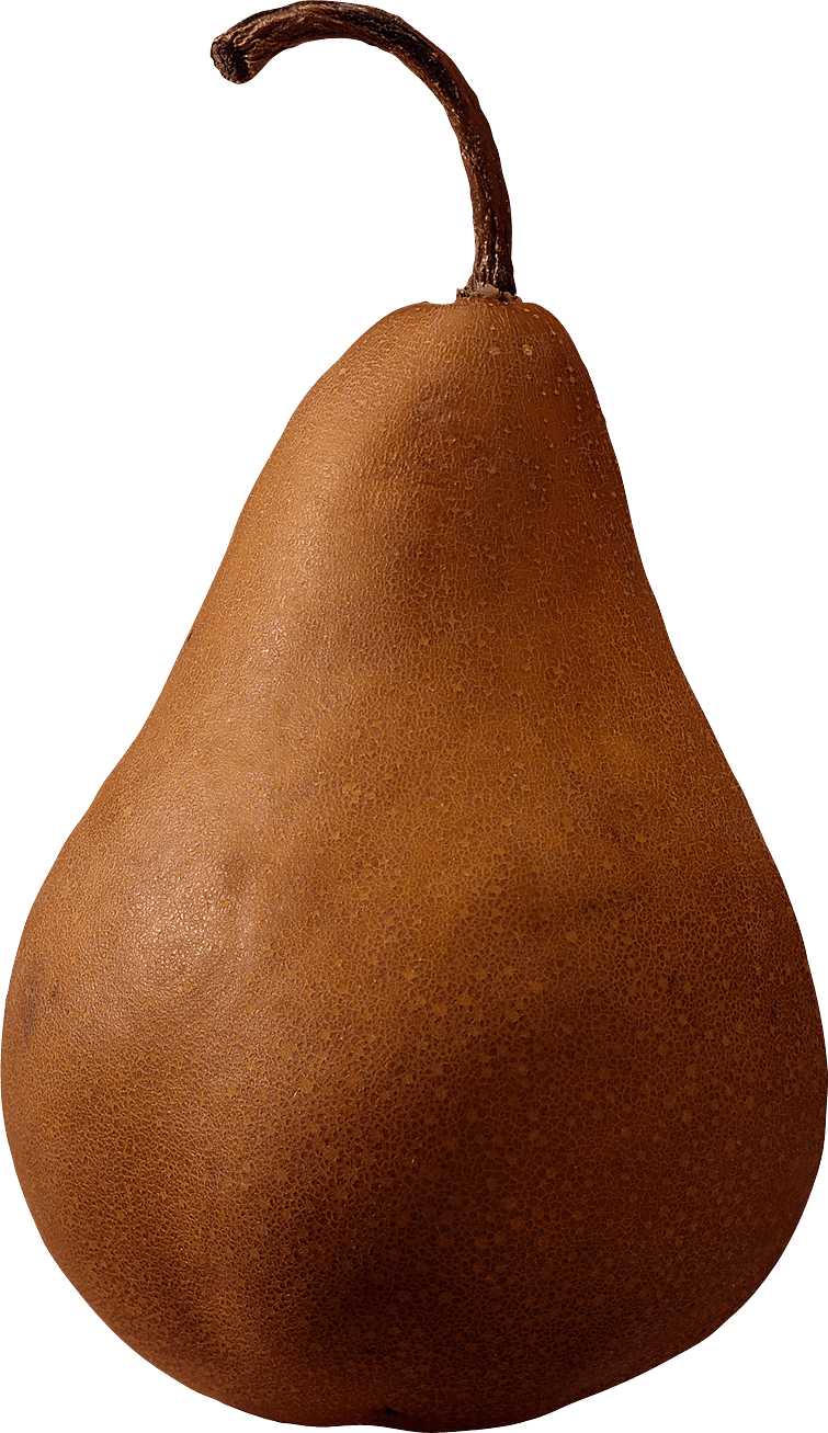 Brown Pear Png Image PNG Image