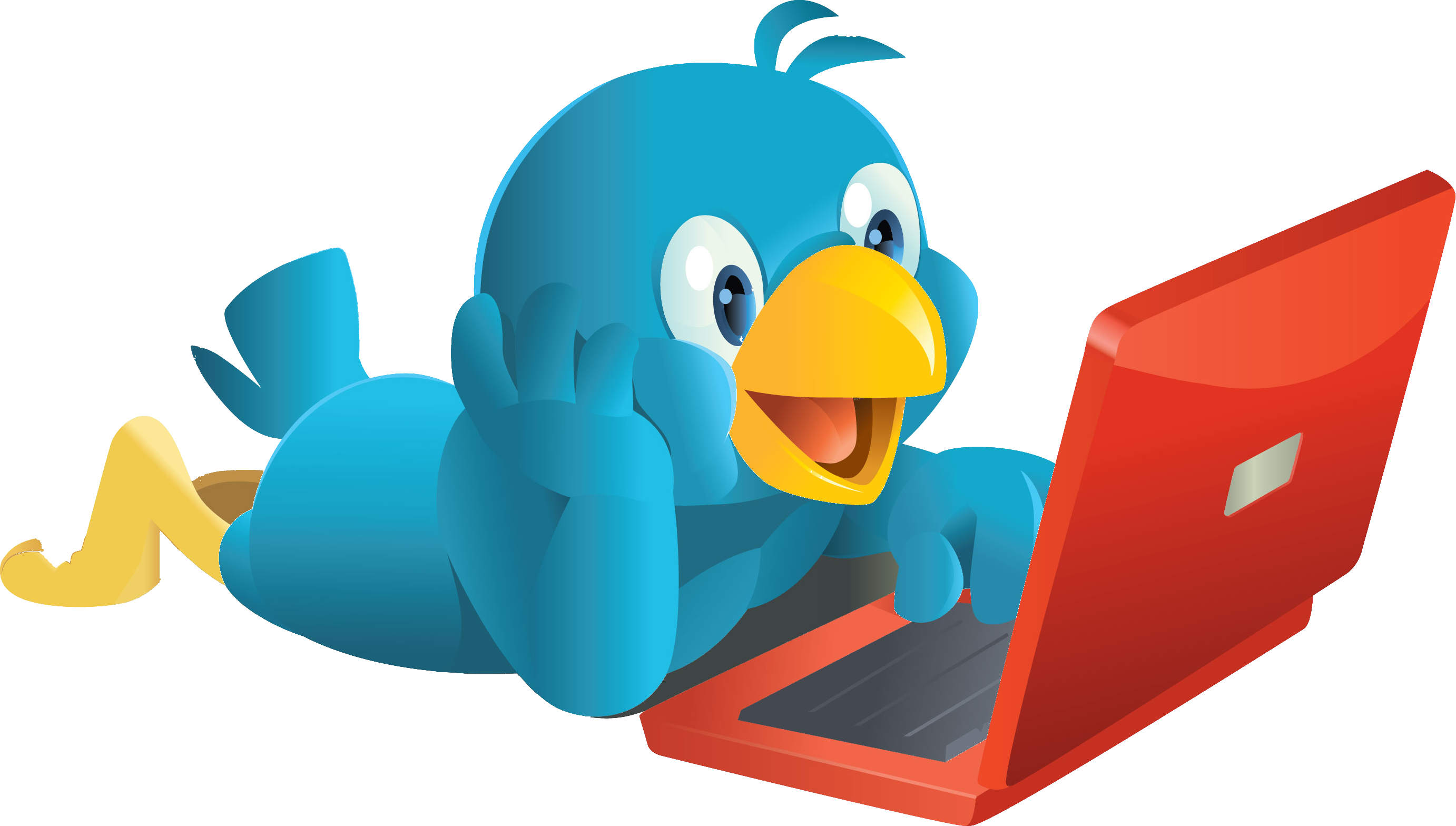 Networking Service Media Twitter User Social Bird PNG Image