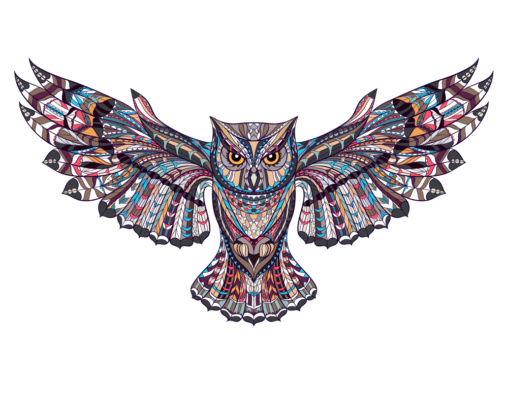 Tattoo Picture Owl Wall Sticker Illustration Decal PNG Image
