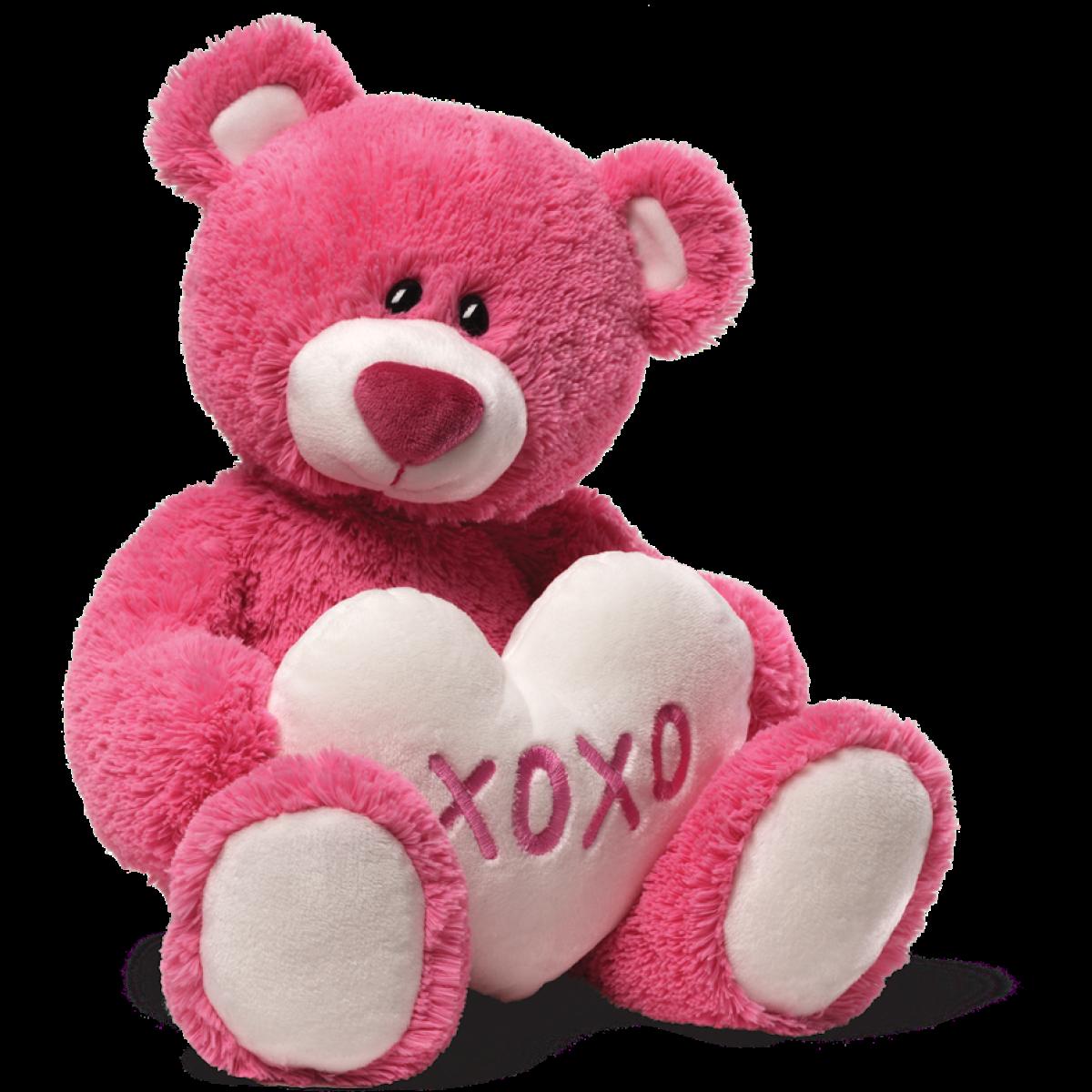 Download Teddy Bear Png Hd HQ PNG Image FreePNGImg