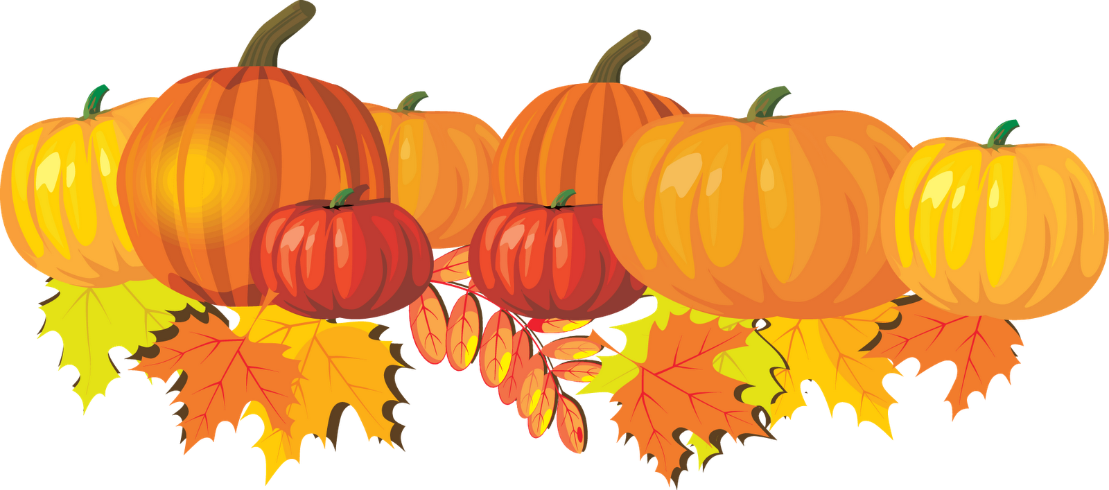 Thanksgiving Pumpkin Photos PNG Image