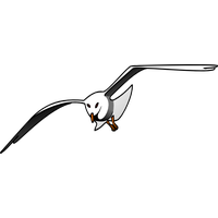 177c2b4f4be Download Albatross Free PNG photo images and clipart