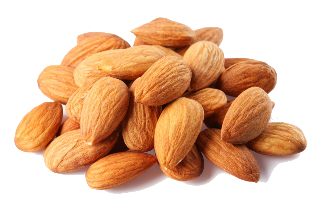 Almond Free Png Image PNG Image