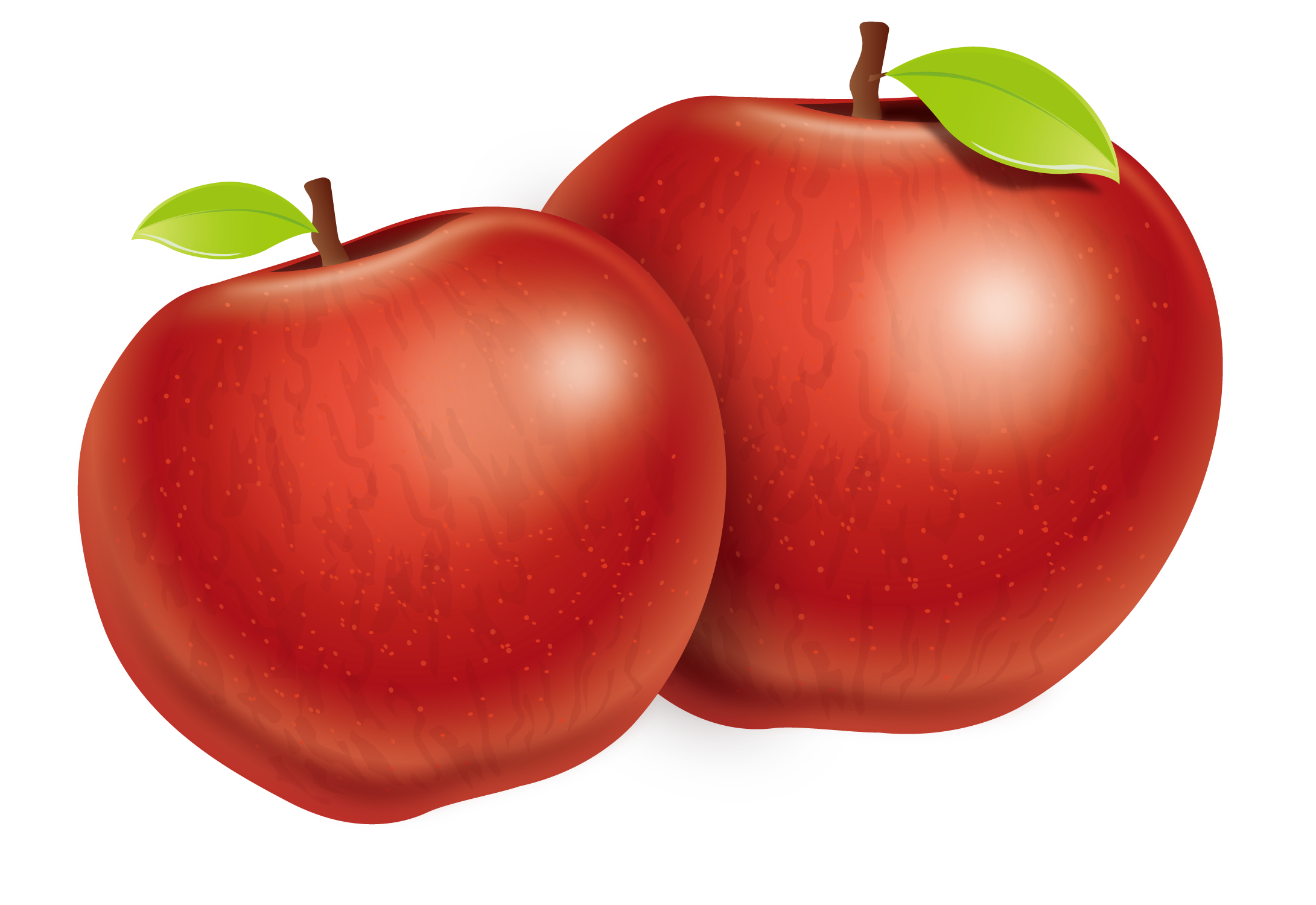 Tomato Apple Plum Two Fuji Vector Apples PNG Image