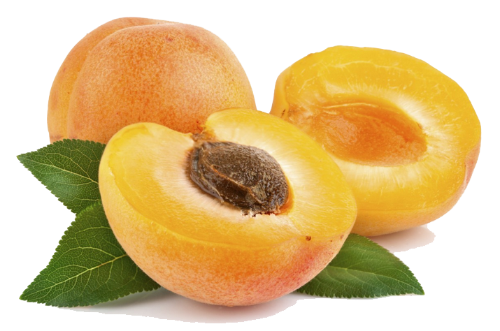 Apricot File PNG Image
