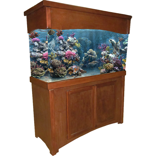 Aquarium Furniture HD Image Free PNG PNG Image