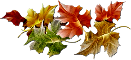 Autumn Png Hd PNG Image
