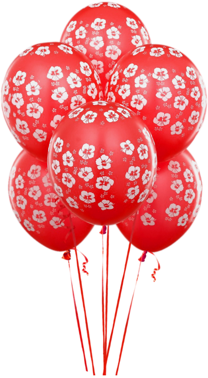 Balloon Birthday Balloons Transparent Red Free Transparent Image HQ PNG Image