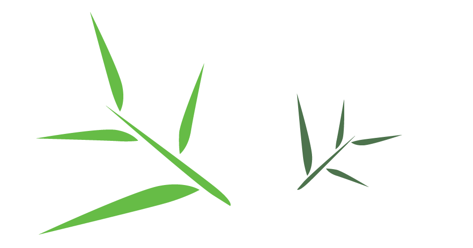 Bamboo Leaf Free Download PNG Image