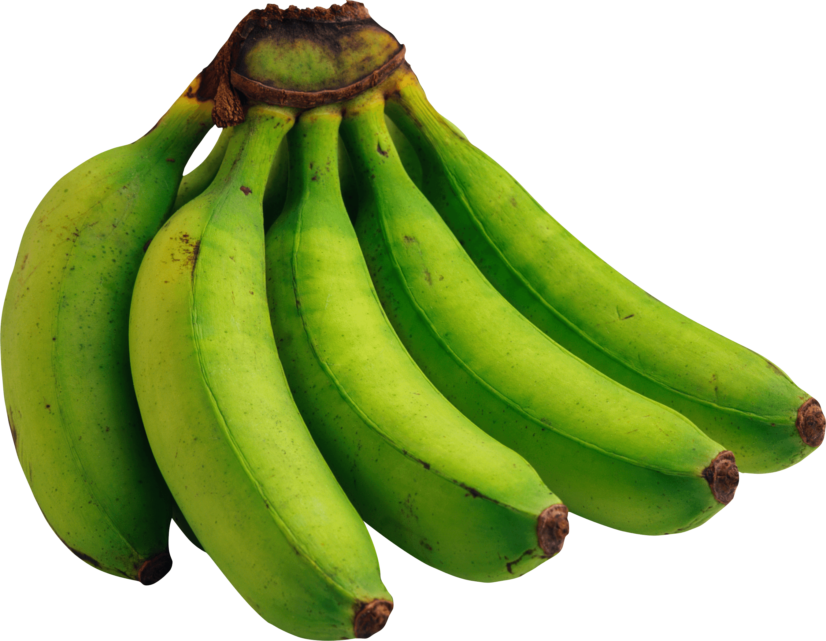 Green Bananas Png Image Picture PNG Image