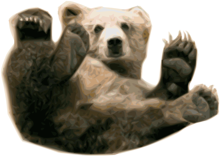 Download Bear Png 13 Hq Png Image Freepngimg Halloween tree cat airship smoke fire explosion. download bear png 13 hq png image