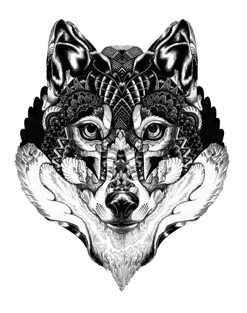 Gray Art Langtou Illustration Tattoo Wolf Drawing PNG Image