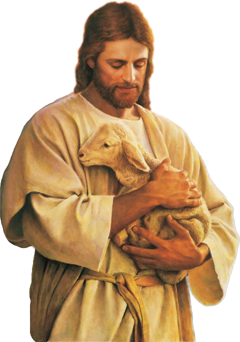 Bible Shepherd Good Christianity Jesus Download HQ PNG PNG Image