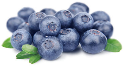 Blueberry Hd PNG Image
