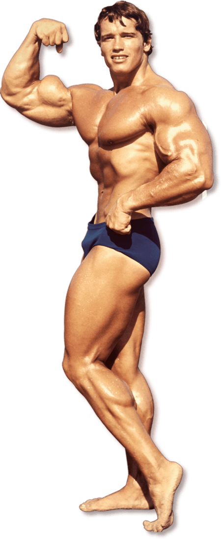 Bodybuilding File PNG Image
