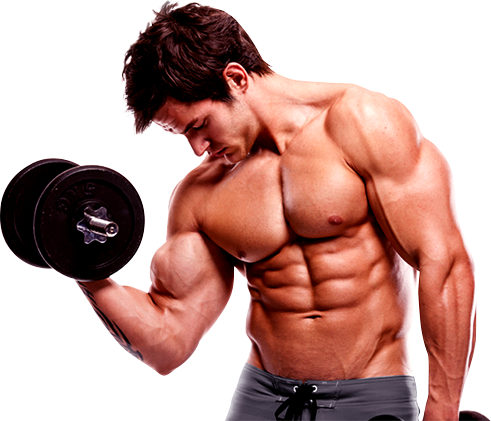 Download Bodybuilding Hd Hq Png Image Freepngimg