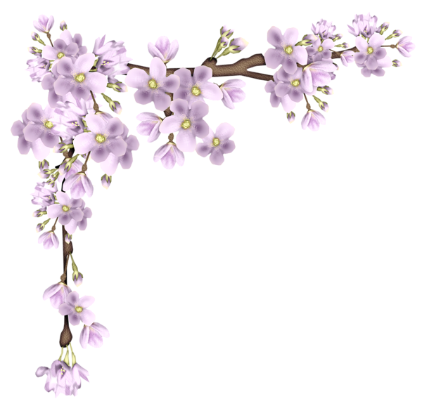 Cherry Floating Material Border PNG File HD PNG Image
