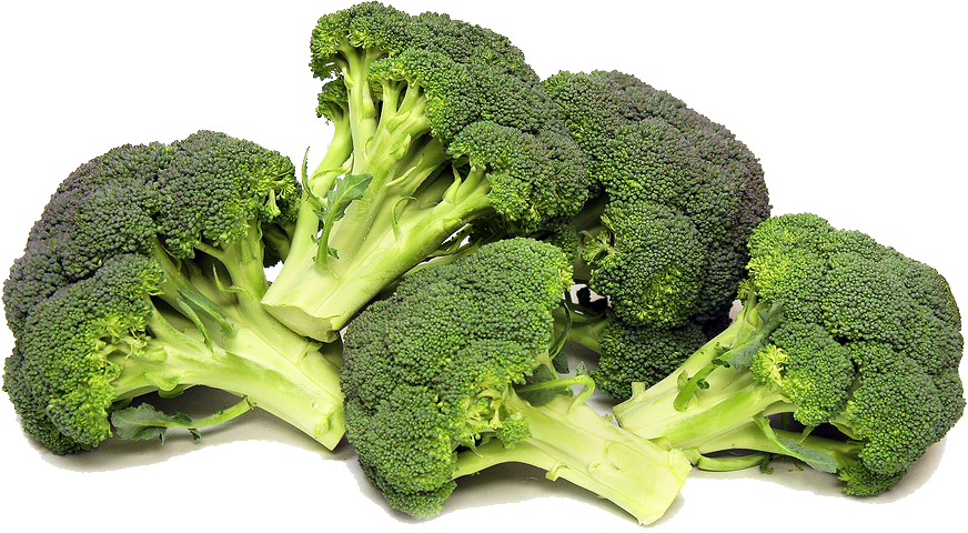 Broccoli Picture PNG Image