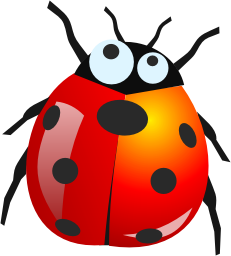 Bug Png 8 PNG Image