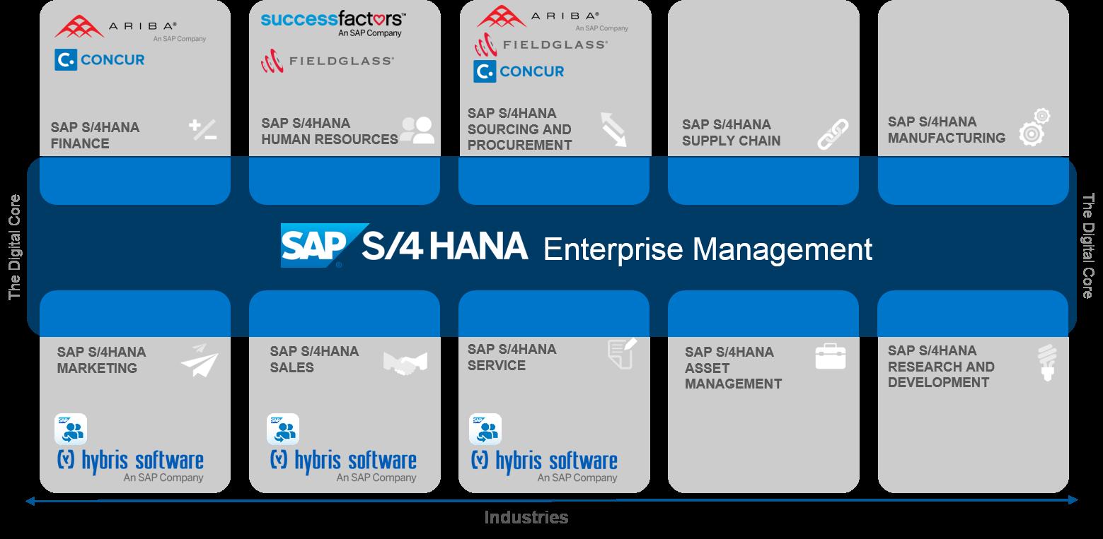 Download Erp Business Hana 4hana Suite Sap Se Hq Png Image