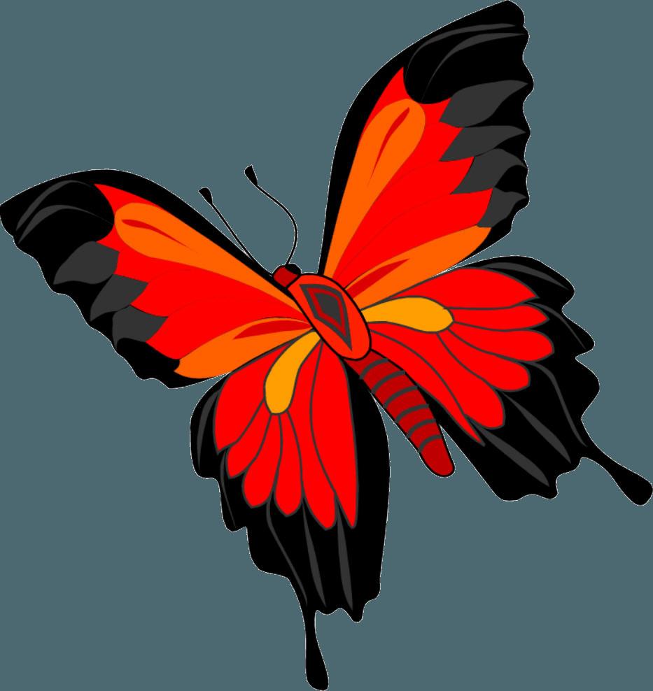 Бабочка анимация картинки для детей, днем рождения девушке