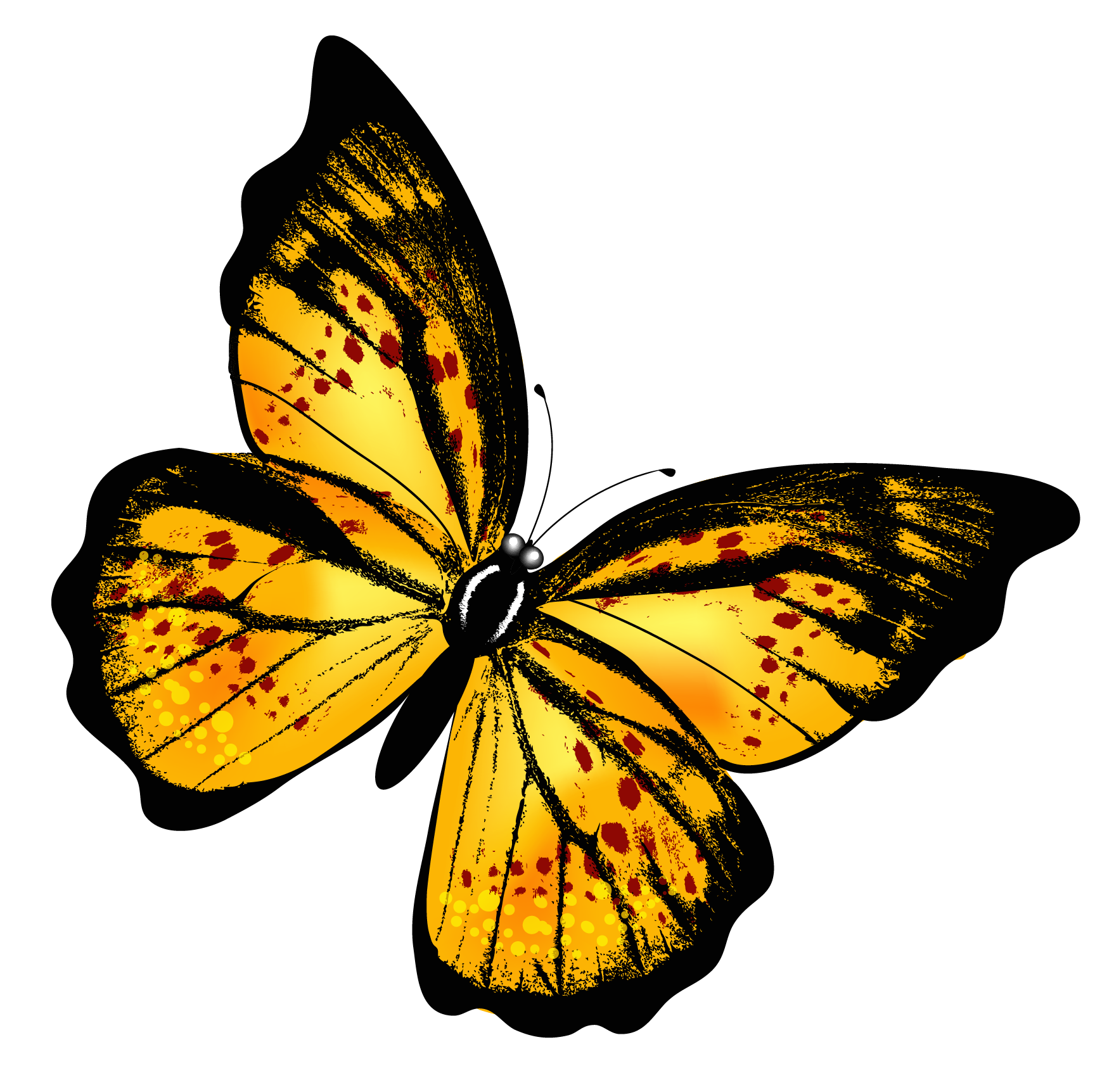 Yellow Butterfly PNG Image