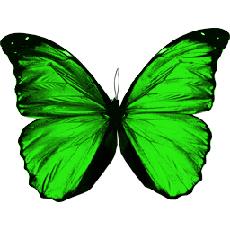 Green Flying Butterfly Png Image PNG Image