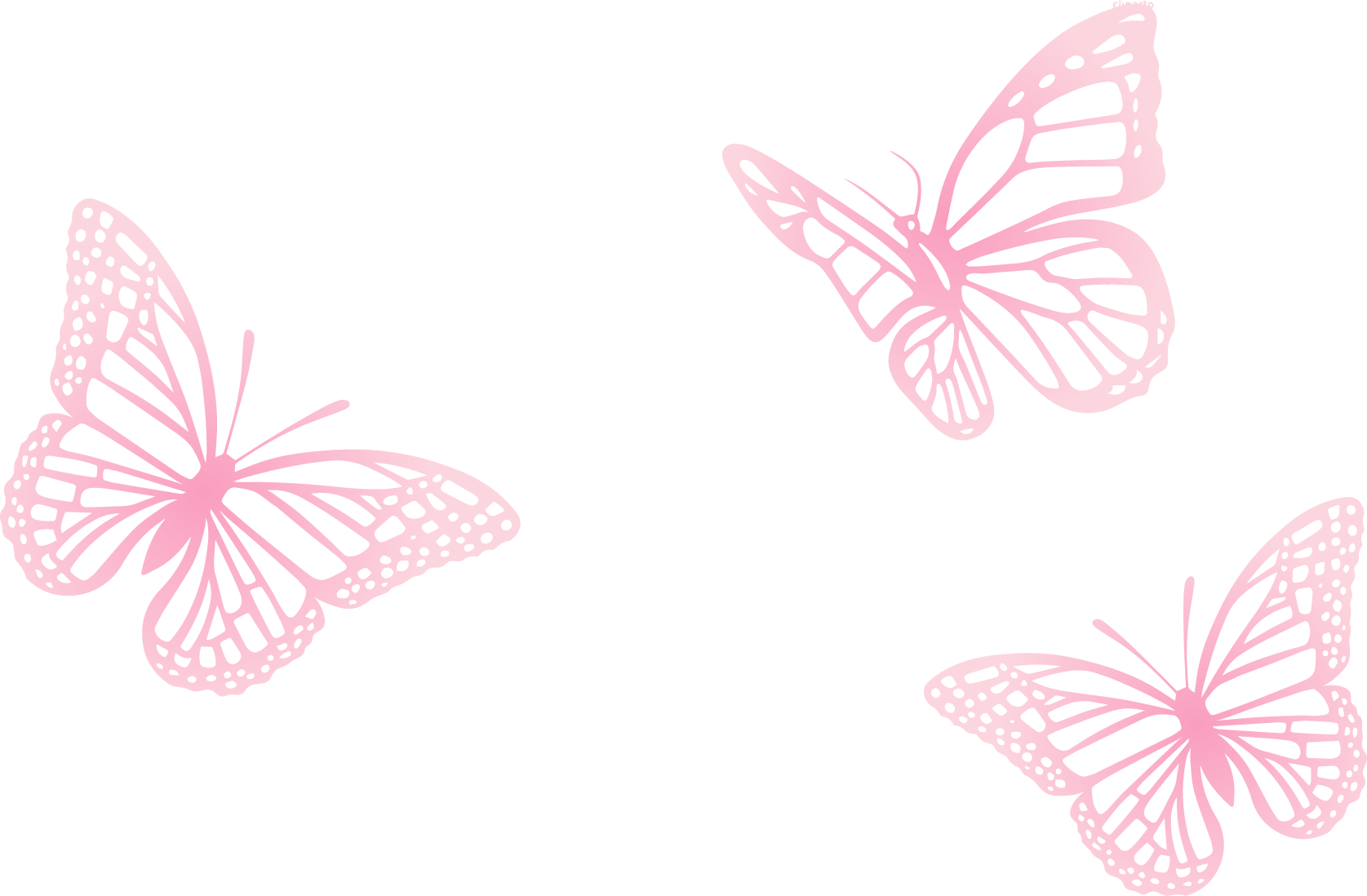 Butterfly Pink Painted Three Euclidean Vector PNG Image