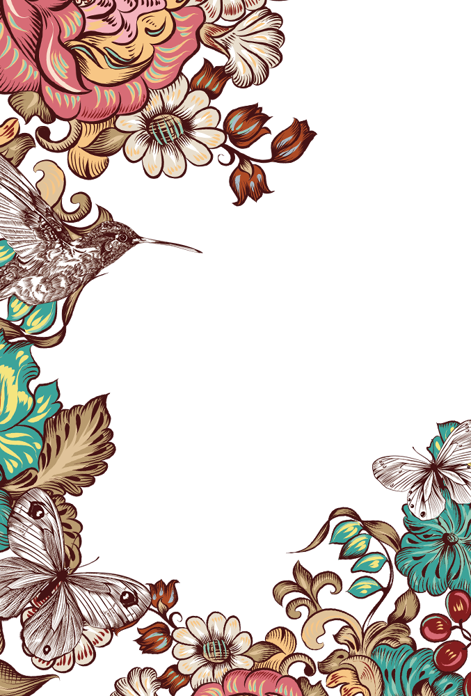 Butterfly Flower Border Bird Hand-Painted Free Frame PNG Image
