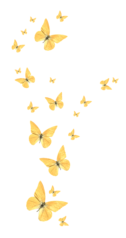 Butterfly Golden HQ Image Free PNG PNG Image