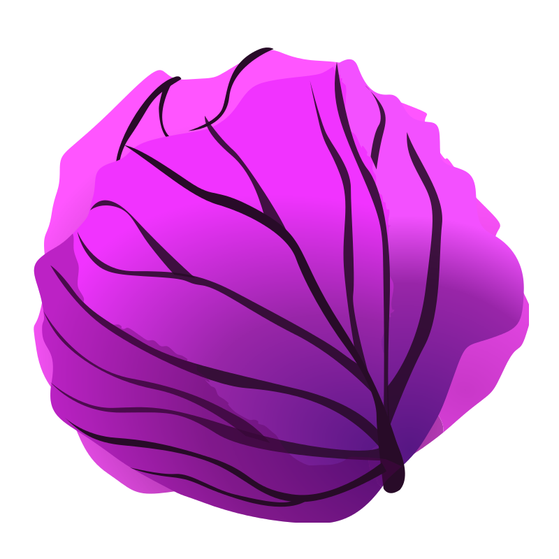 Purple Cabbage Clip Art PNG Image