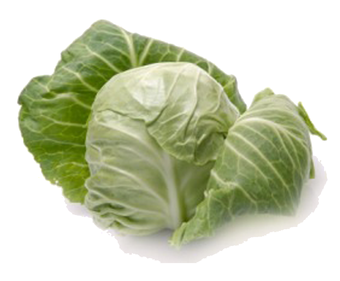 Cabbage Png PNG Image