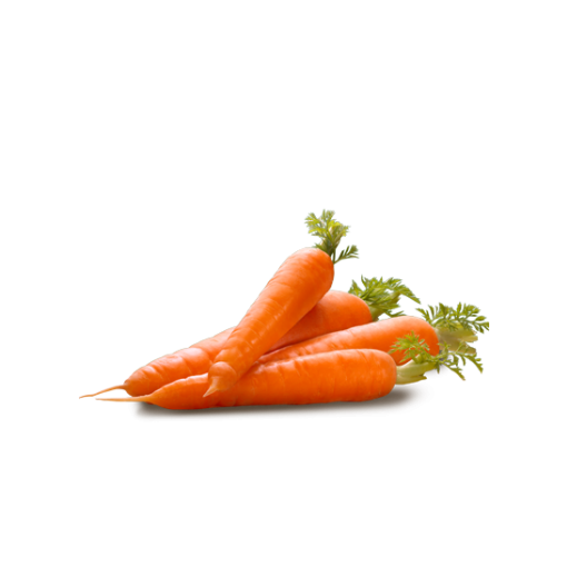 Carrot Picture PNG Image