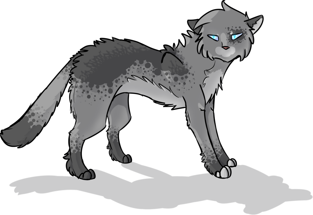 Whiskers Fox Cat Lion Wolf Red PNG Image