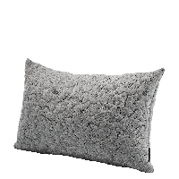 Cushion Image