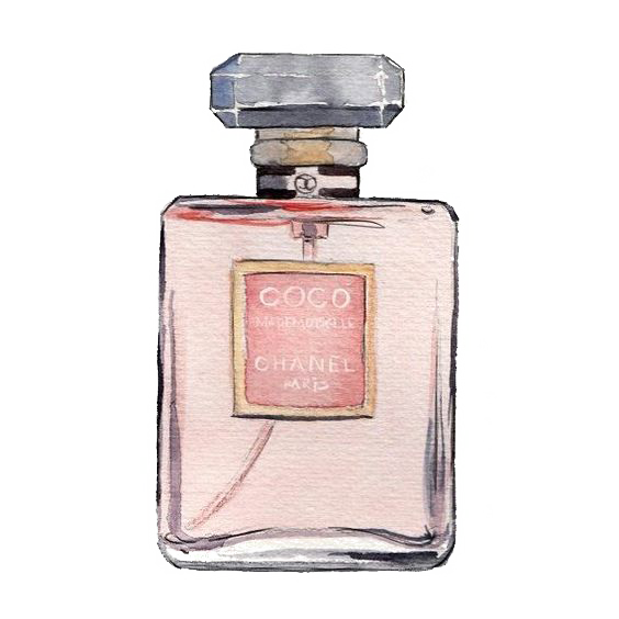 Mademoiselle No. Perfume Watercolor Coco Painting Chanel PNG Image