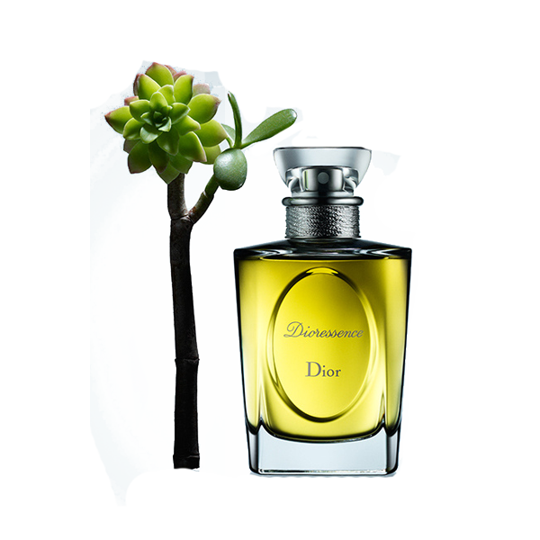Oil Christian Chanel Designer Dior Perfume Essential PNG Image