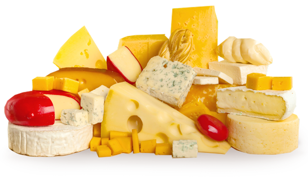 Download Cheese Image Hq Png Image Freepngimg If you like, you can download pictures in icon format or directly in png image format. download cheese image hq png image