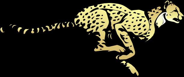 download cheetah transparent image hq png image freepngimg cheetah transparent image hq png image