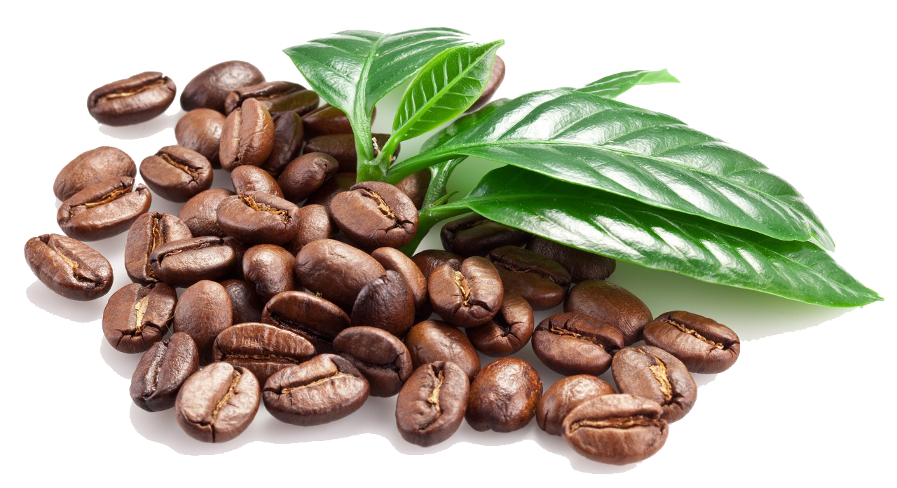Coffee Beans Png Clipart PNG Image