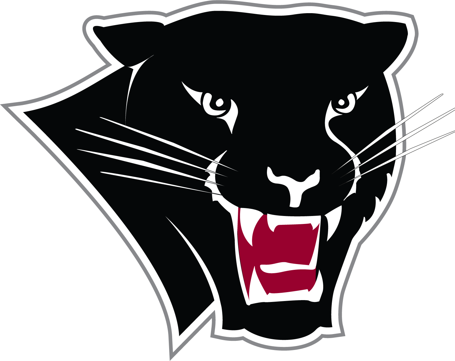 Basketball Panther Institute Of Football Florida Women'S PNG Image