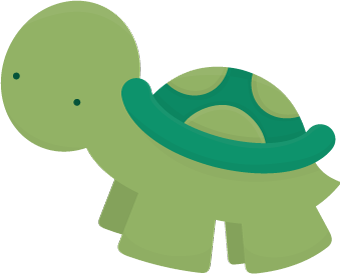 Cute Turtle Picture PNG Image