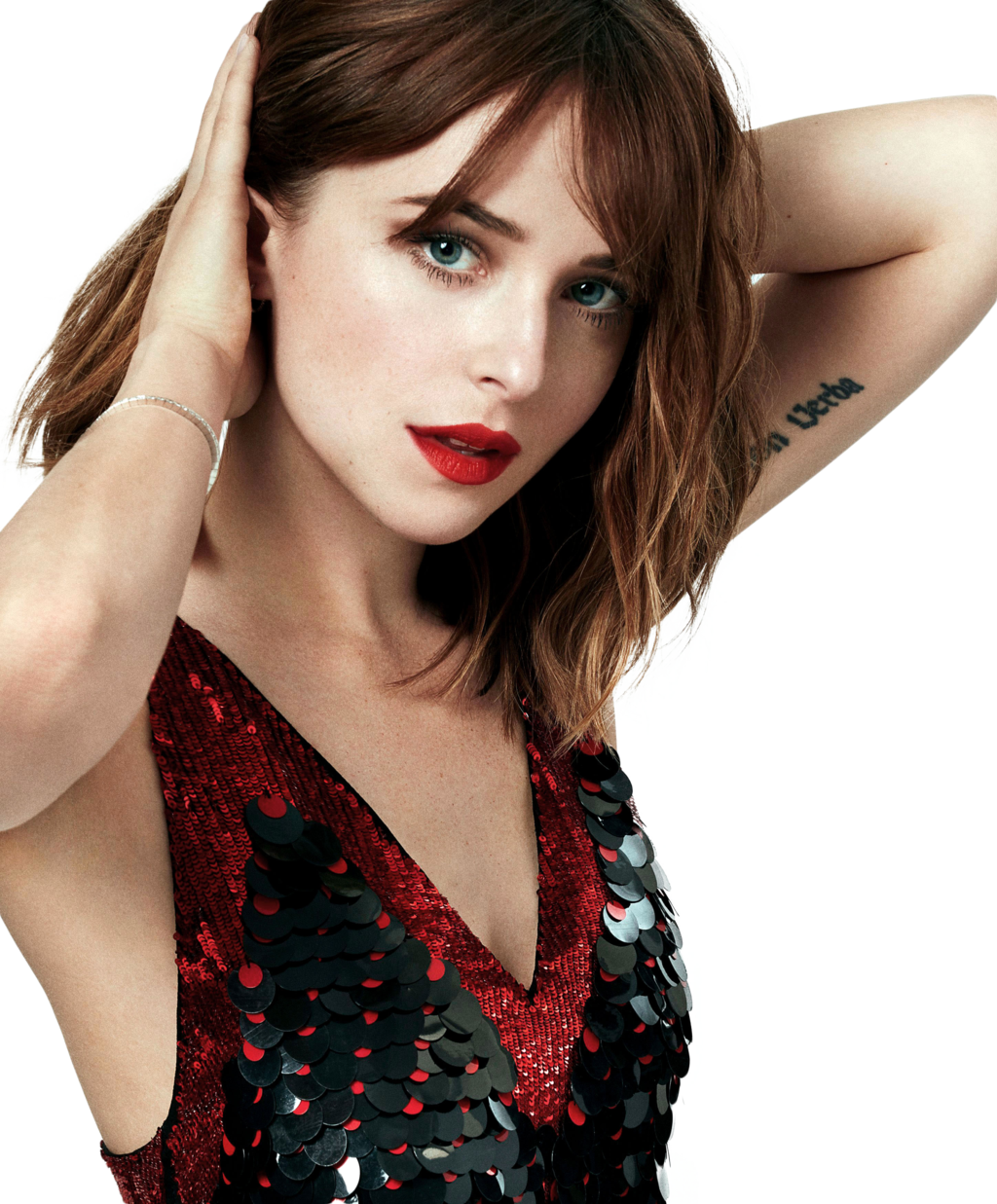 Dakota Johnson Picture PNG Image