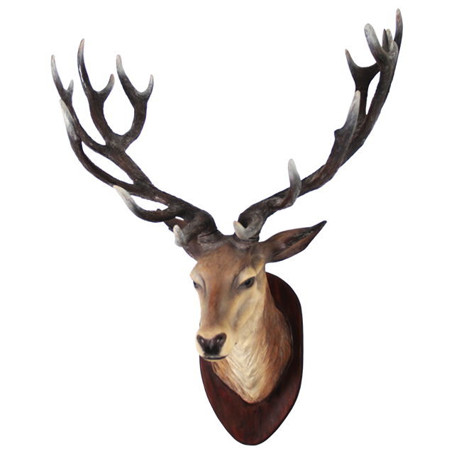 Deer Head Transparent Image PNG Image