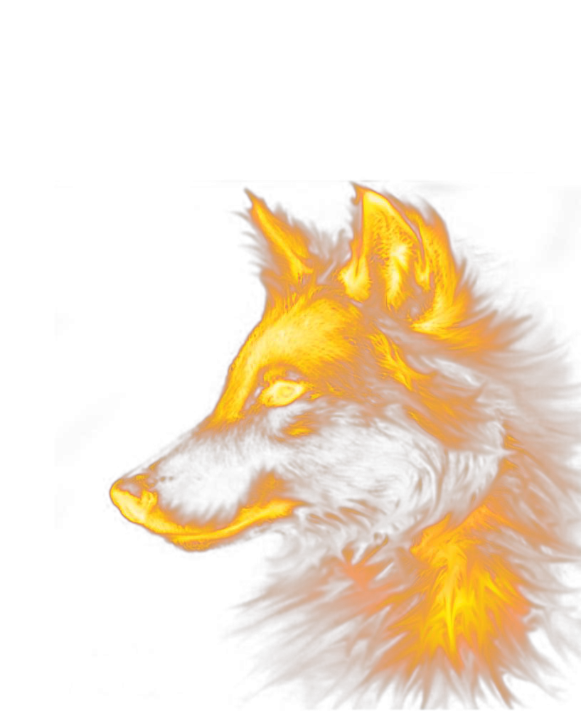 Fox Dog Wolf Red Special Effects PNG Image